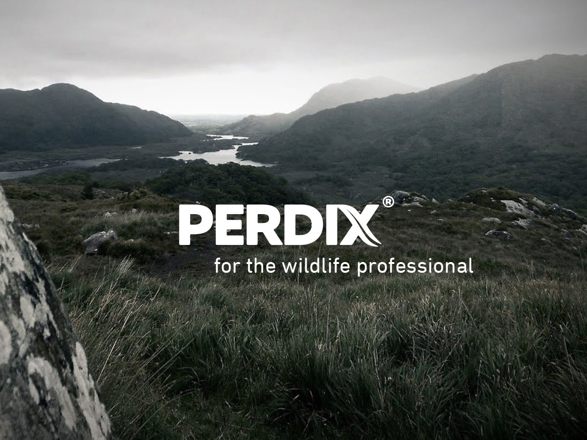 Perdix logo with strapline 'for the wildlife professional'
